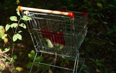 Se libérer du consumérisme. Un enjeu majeur pour l'humanité et la Terre